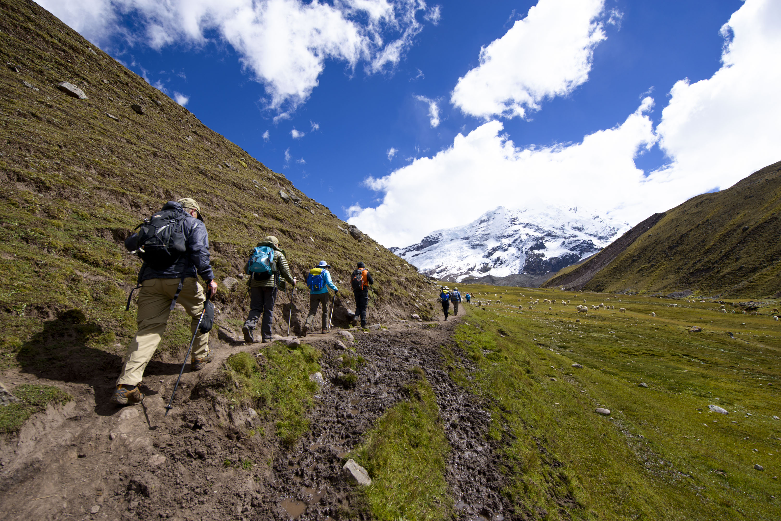 Trekking with Andean Lodges: a step-by-step guide to the best trekking adventures in the Andes